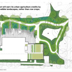 Landsape plan, Living Building at Georgia Tech