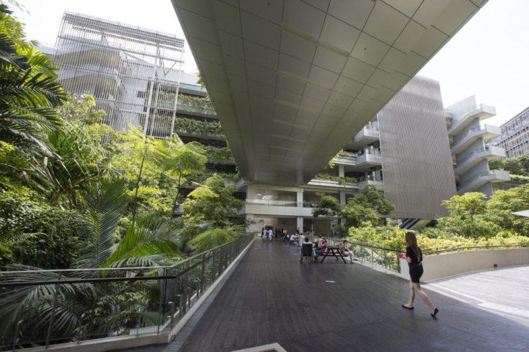 Keller Award, Stephen R. Kellert Award, Living Building Challenge, Biophilic Design, Singapore